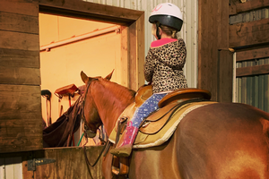 Defining horse jargon: Beginner riding terms