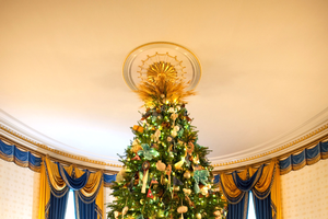 The 2014 official White House Christmas Tree. Photo: Chuck Kennedy via Wikimedia Commons