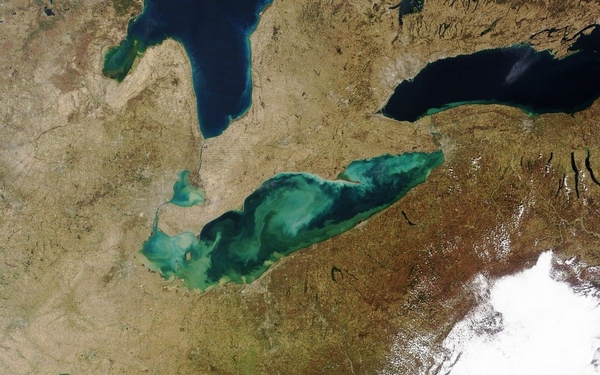 Satellite image of Lake Erie 2017 algae bloom. (Photo by Cooperative Institute for Great Lakes Research).