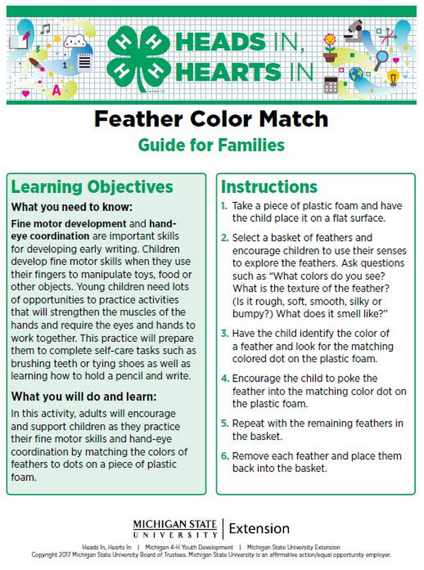 Feather Color Match cover page.