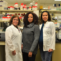 MSU researchers Evangelyn Alocilja, Jade Mitchell and Ilce Medina Meza are advancing global health through disease detection and prevention.