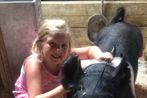 Changes to Ractopamine usage for pigs at several county fairs and exhibitions part 1