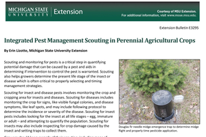 Integrated Pest Management Scouting in Perennial Agricultural Crops (E3295)