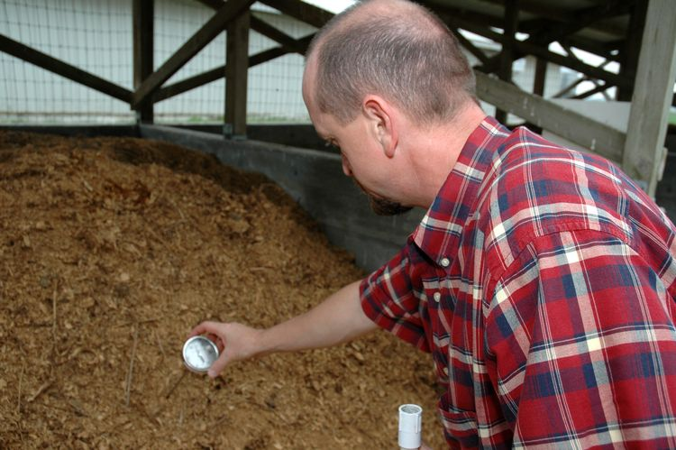 A man testing compost.