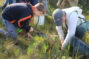 Students assist scientist David Cuthrell in pumping out crayfish burrows in search of endangered dragonfly larvae. Photo: Brandon Schroeder | Michigan Sea Grant