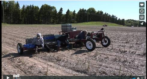 Screenshot of harvest training video