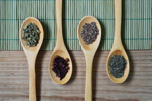 Four different dried herbs in wooden spoons.