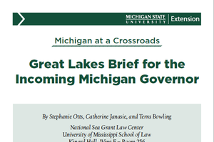 cover image of Great Lakes Brief for the Incoming Michigan Governor