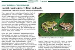 Smart Gardening for Shorelands: Keep it Clean to Protect Frogs and Toads
