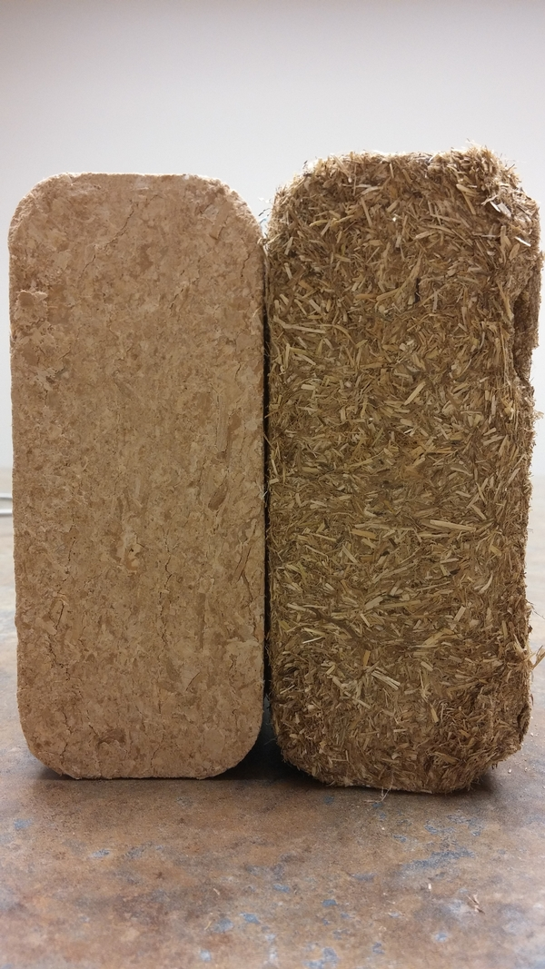 Brick on the right is made from ground switchgrass. Courtesy of Charles Gould.