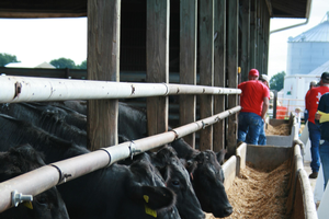 What do consumers think once they have been on a beef farm?