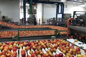 Grand Rapids area apple maturity report – Oct. 7, 2020