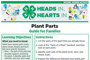 Plant Parts cover page.