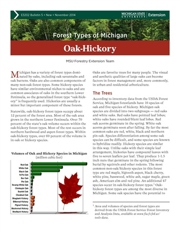 Forest Types Of Michigan Oak Hickory E3202 5 Msu Extension