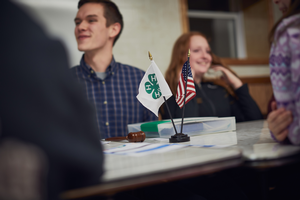 Sample by-laws for 4-H advisory groups – Part 1