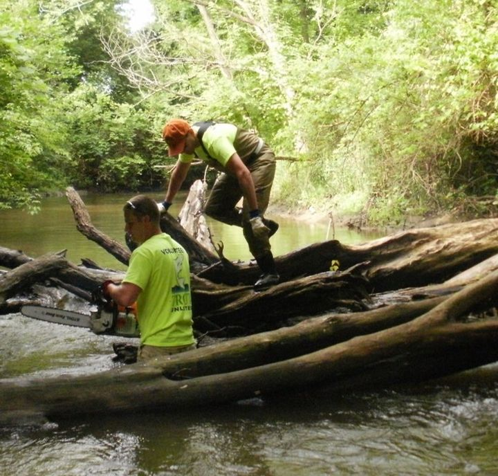 Volunteers manage large woody debris causing log jam.Photo credit: Clinton River Watershed Council