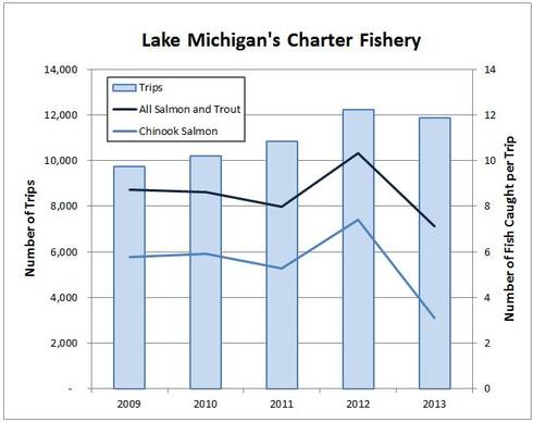 Chinook salmon catch rate dropped in 2013, but the news is not all bad. Image credit: Michigan Sea Grant