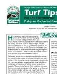 Crabgrass Control In Home Lawns E0002turf Msu Extension