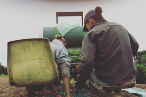 The Apprentice Farmer Program — growing farmers in the Upper Peninsula