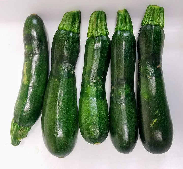 Zucchini showing water-soaked lesions
