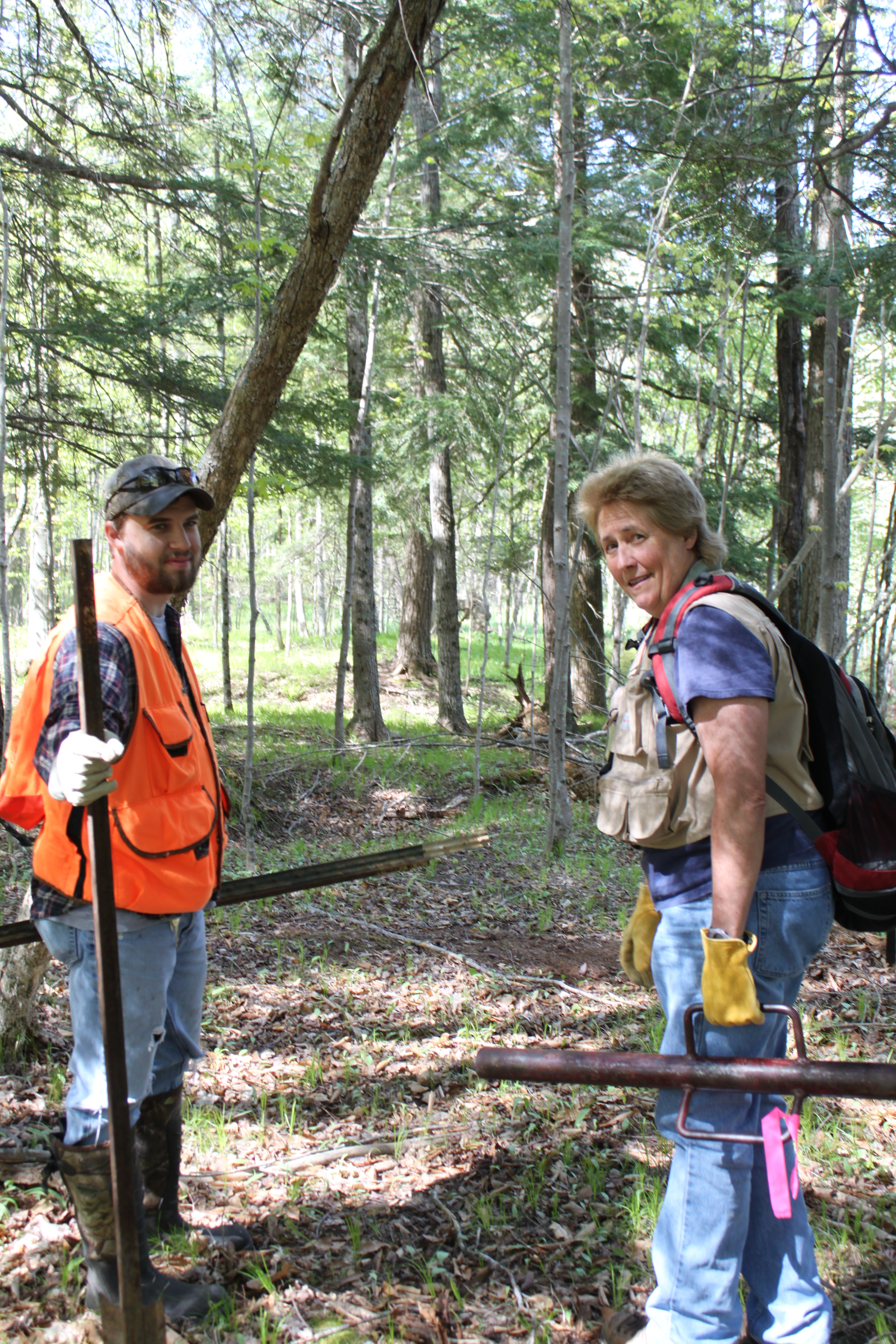 McCullough works with James Wieferich, now a forest health specialist with the Michigan Department of Natural Resources, on EAB research in a forest in Mecosta County.