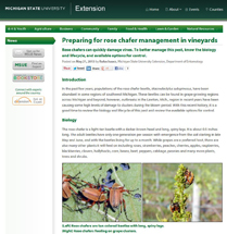 insect pest updates screen shot