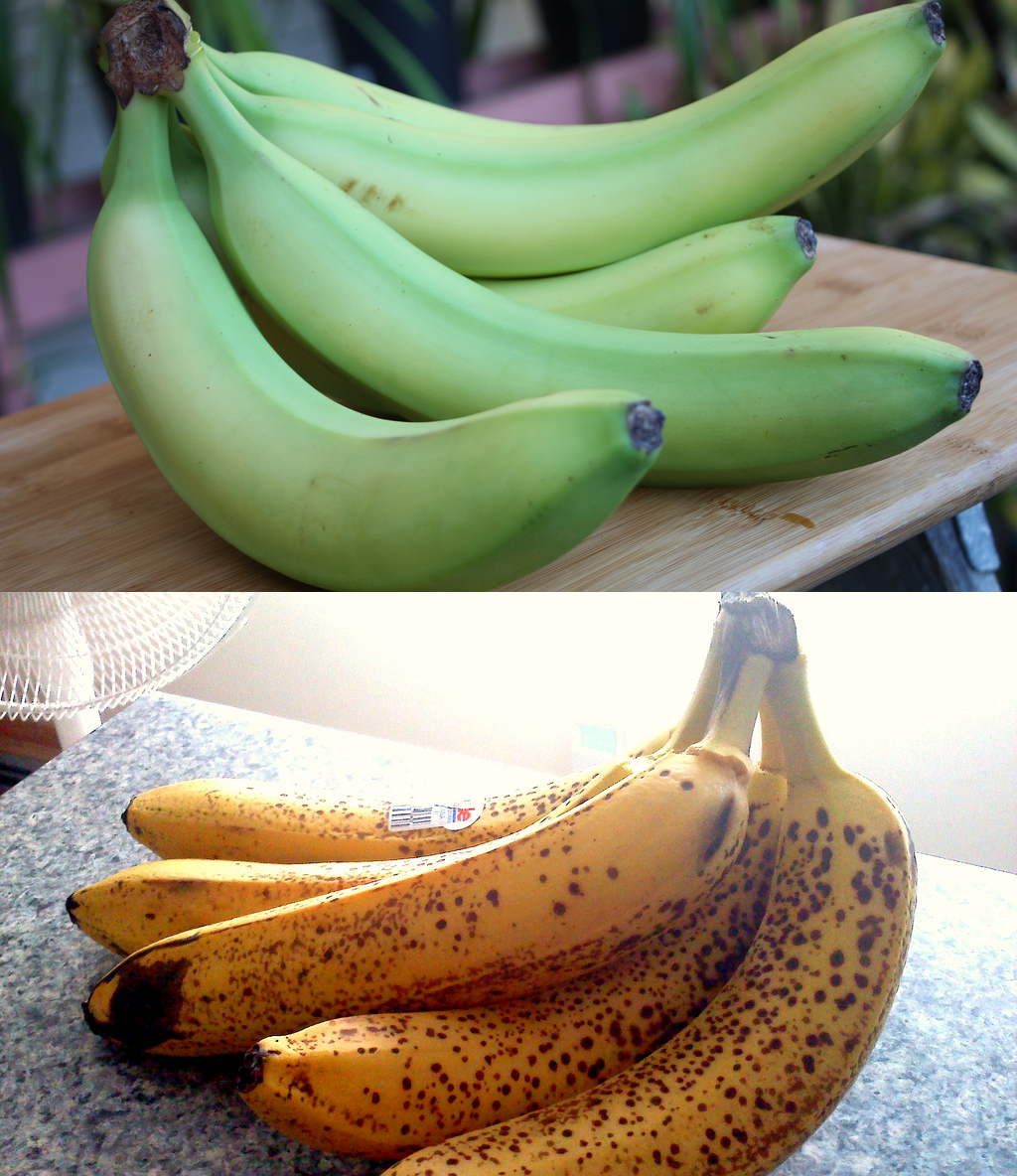 Ripe and unripe bananas