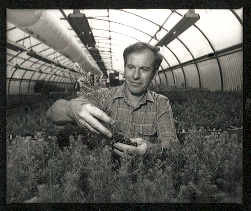 Historic photo of Jim Hanover in an MSU greenhouse
