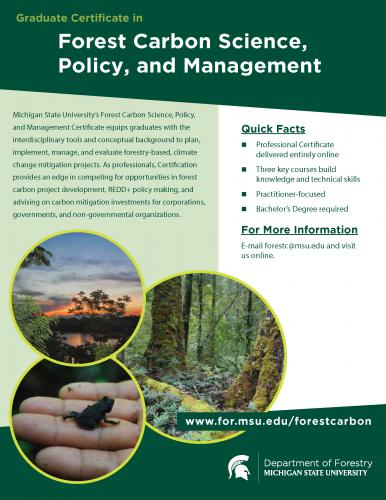 Image of Forest Carbon Certificate Flyer