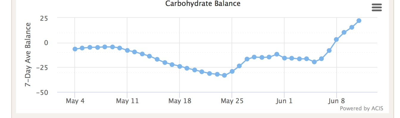 Graph of carbohydrate balance