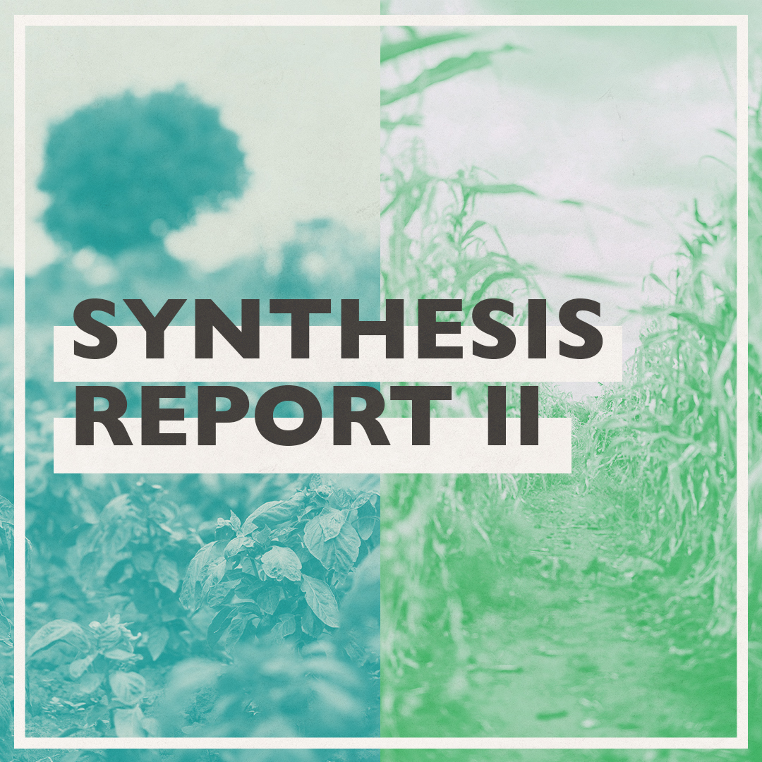 Synthesis Report 2 Social Graphic V2