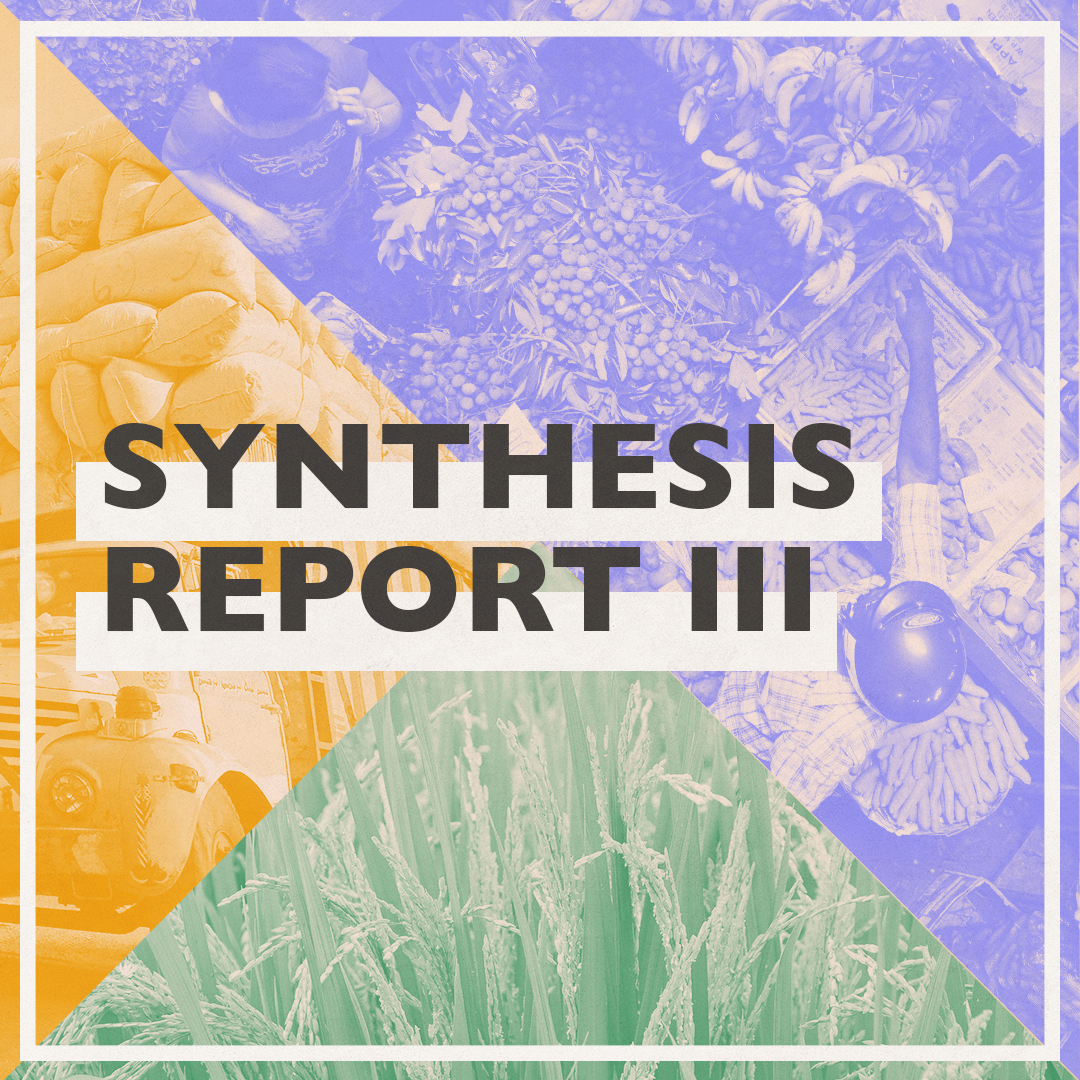 Synthesis Report 3 Social Graphic V1