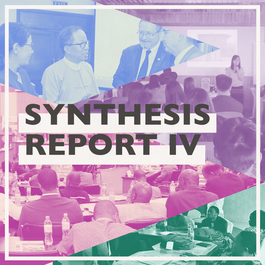 Synthesis Report 4 Social Graphic V1