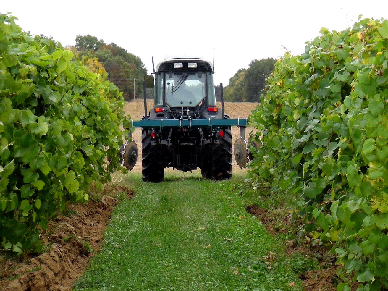 Hilling up soil