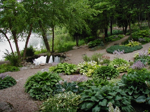 The Benedict Hosta Collection, Also Known As Hosta Hillside, Is Located On  The Site Of The Original Rock Garden Built By Mr. Fee In The 1940u0027s.