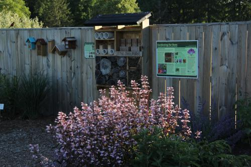 The bee hotel with flowers in the foreground