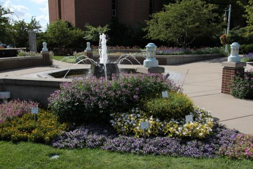 A fountain with trial variety flowers in the foreground
