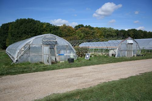 Hoophouses at the MSU Student Organic Farm