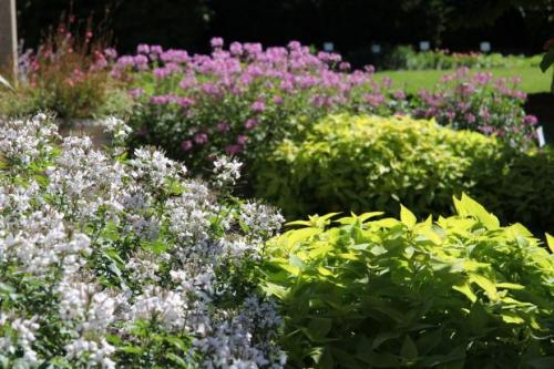 Picture of Gardens in Bloom