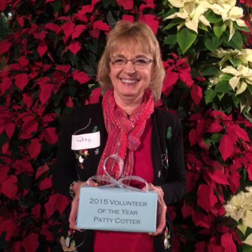 2015 Volunteer of the Year