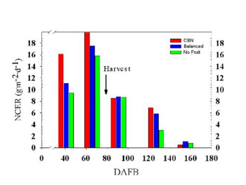 NCER for three cropping level treatments at 41, 66, 91, 127, and 155 DAFB.