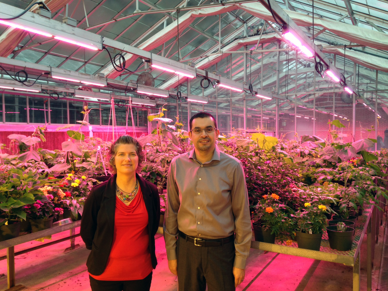 Department of Horticulture faculty members Kristin Getter and Roberto Lopez in one of the teaching greenhouses at MSU.