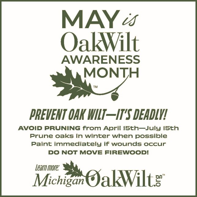 May is Oak Wilt Awareness Month graphic.