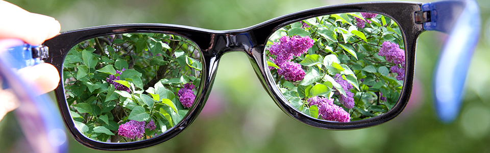 Photo a glasses with purple flowers showing through the lenses.