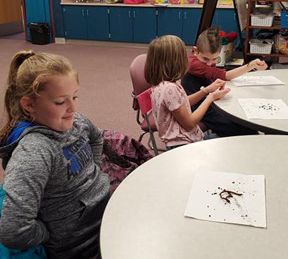 Students examining worms