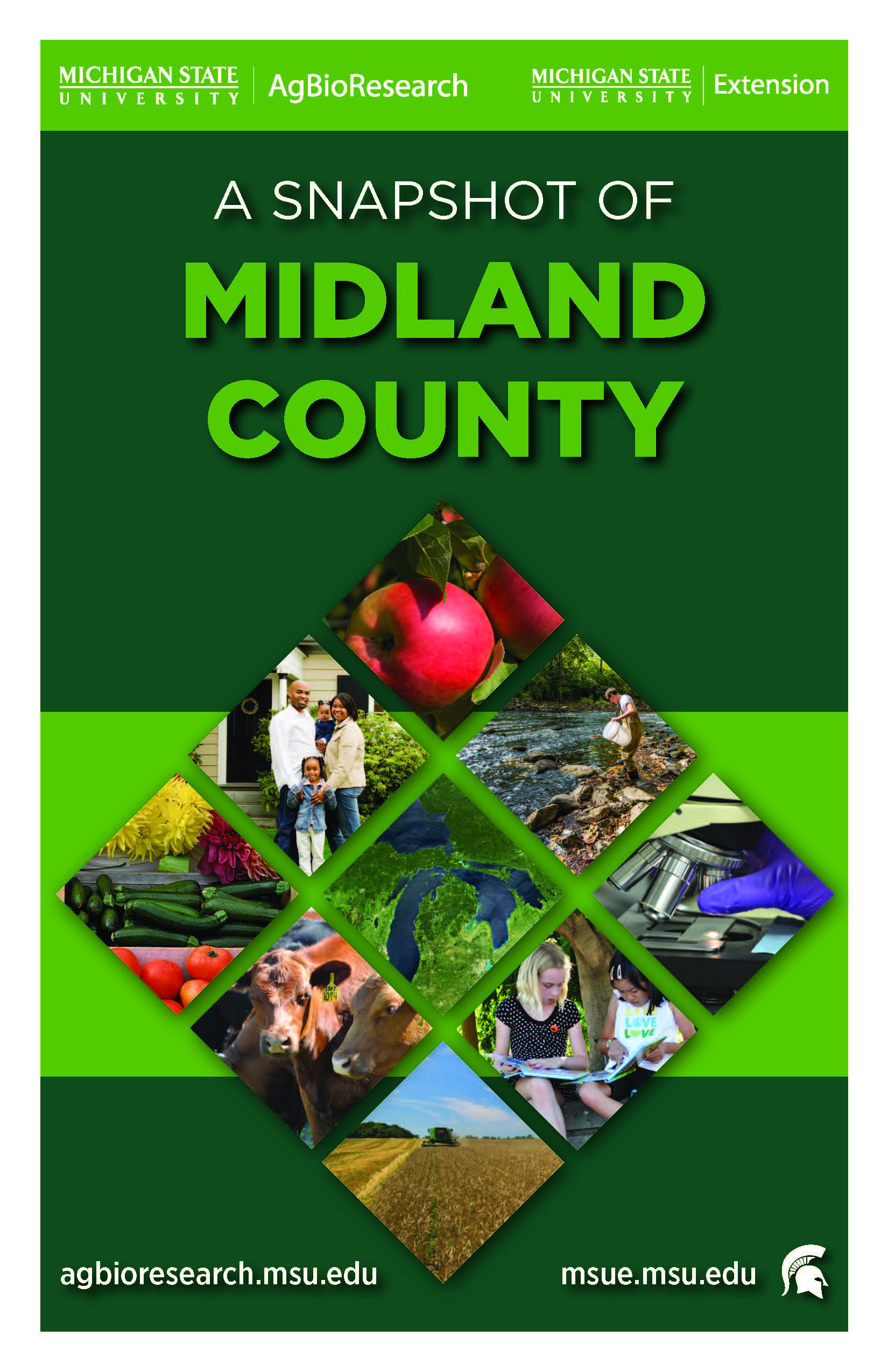 ABR-MSUE_County_Portrait_Midland_Page_01