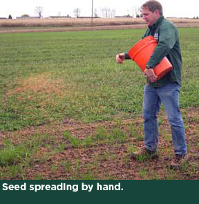 Seed spreading by hand.