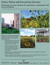 Native Plants cover