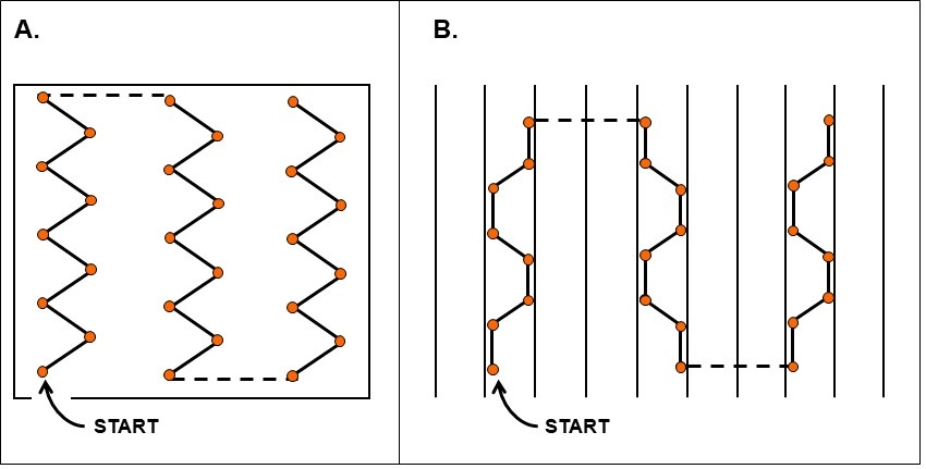Diagrams of two different sampling schemes.