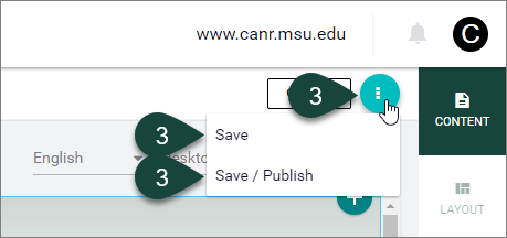 This image shows where the Save and Save/Publish buttons can now be found.